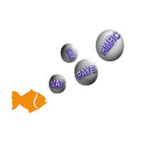 Little Fish Accountants logo